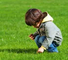 Çim, çimenlik çayırlık alanlar yapma işi