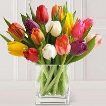 Vazoda çiçeklerin daha uzun süre dayanması için
