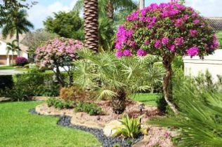 Bahçelerde devamlı çiçek açan küçük ağaçlara yer verilmeli. Ya da sürekli çiçeklenen çalı formundaki bitkilere şekillendirici budamalarla küçük bir süs ağacı görüntüsü kazandırılabilir.