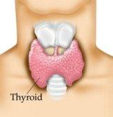 Tiroid bezi, zehirli guatr hastalığı, etkileri ve tedavi yolu